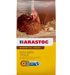 barastoc golden yolk